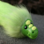 Cabbage icon.png